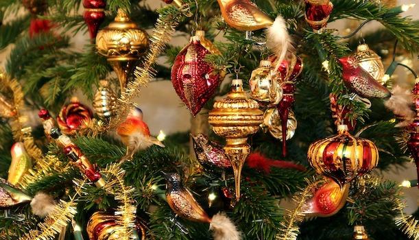 weihnachtsbaum kaufen selber schlagen tipps 2015. Black Bedroom Furniture Sets. Home Design Ideas