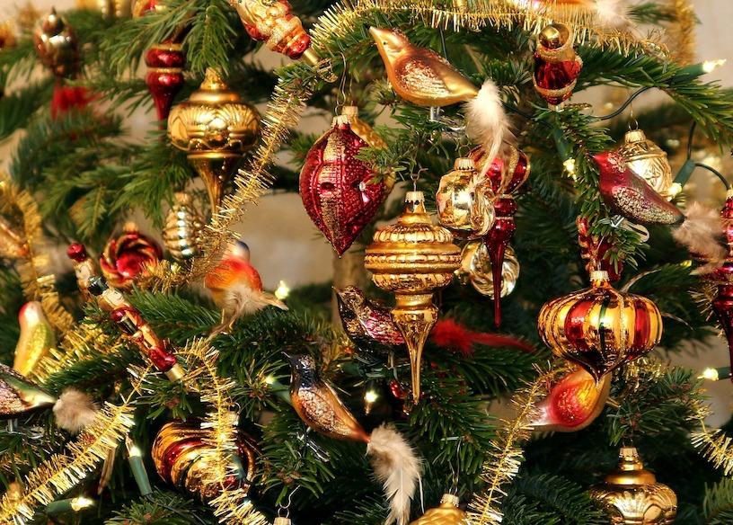 Tannenbaum Selber Schlagen.Weihnachtsbaum Christbaum Tannenbaum Selber Schlagen