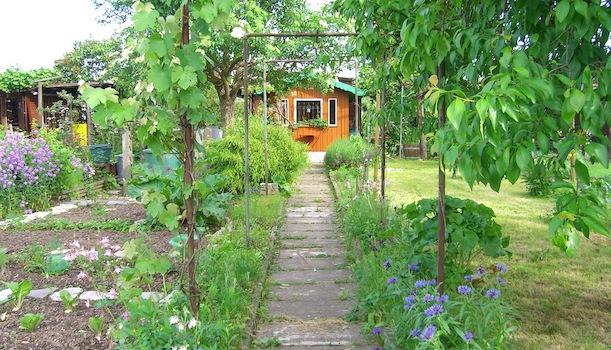 Schrebergarten gestalten so wird der kleingarten h bsch for Kleingarten modern