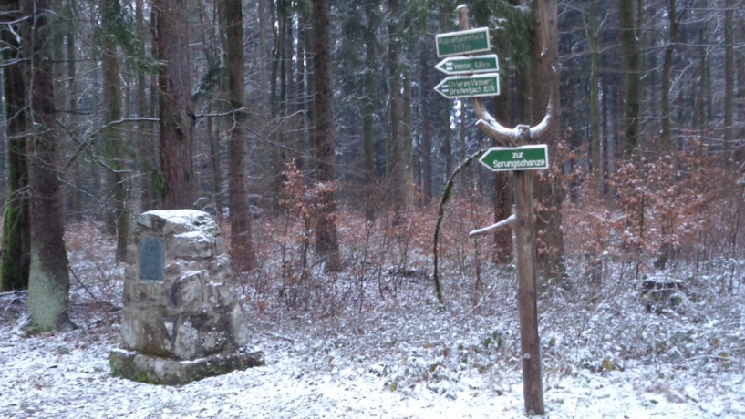 Vesser, Runnebaumstein, Schnee, Winter, kalt