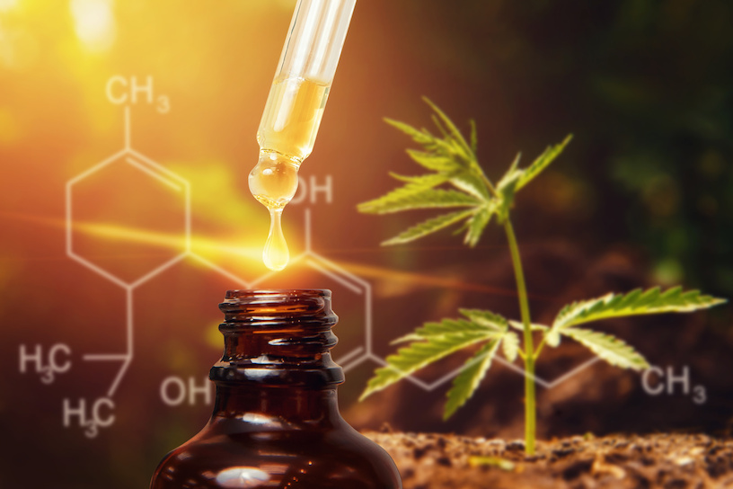 CBD is a natural ingredient of the hemp plant.