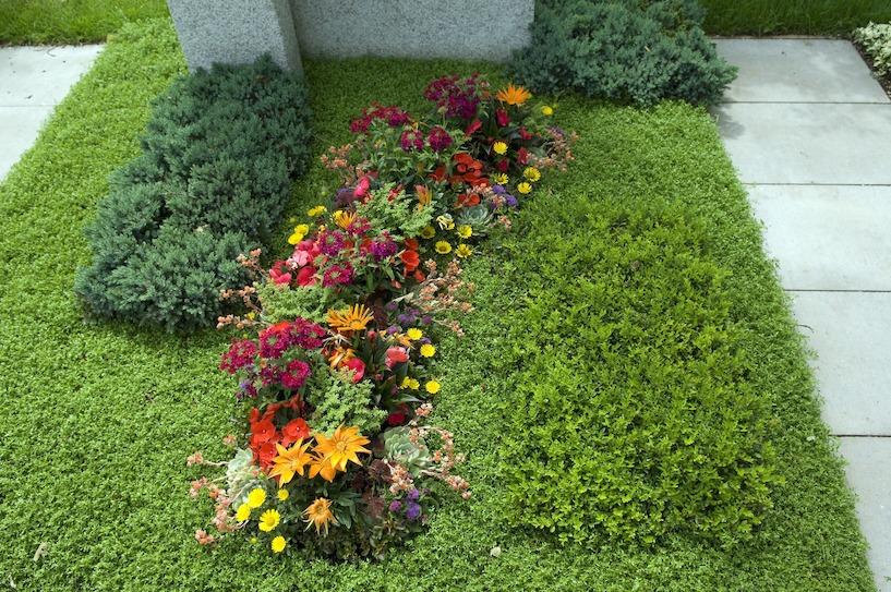Pflegeleichte Grabbepflanzungen Im Sommer Beispiele Tipps