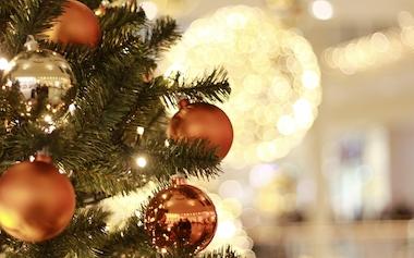 Weihnachtsbaum Kaufen Essen.Wer Ist Der Beste Weihnachtsbaum Schöne ökologische Bäume Tipps