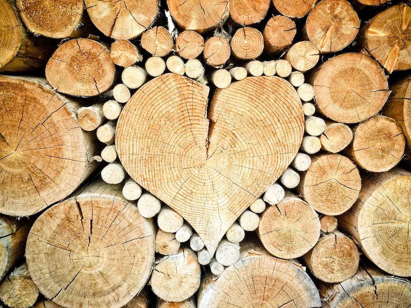 brennholz baden württemberg kaufen